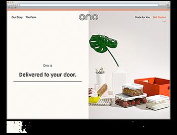 Website der Woche KW 20 ono meals